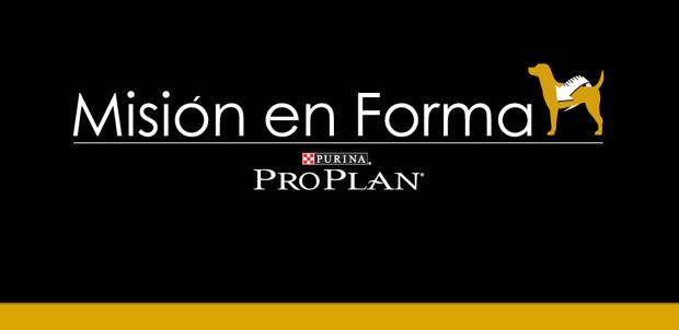 Mision en Forma Purina