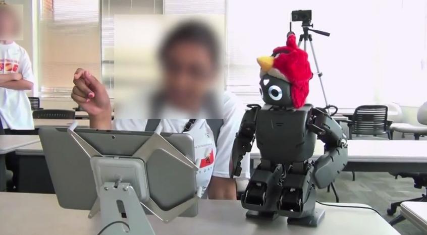 Robot Angry Birds