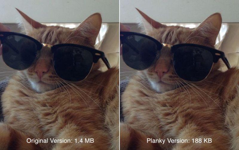 cat2 planky