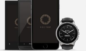 vector-watch-fitbit